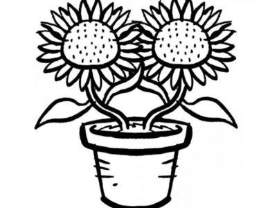 desenhos de pintar imprimir e colorir desenhos de flores