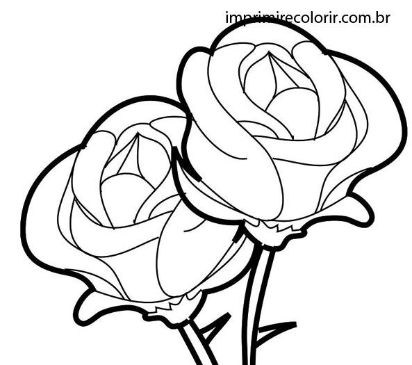 Rosas Desenhos Para Imprimir E Colorir